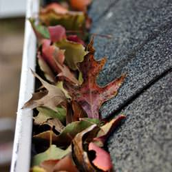Clogged gutters filled with fall leaves  in Camillus